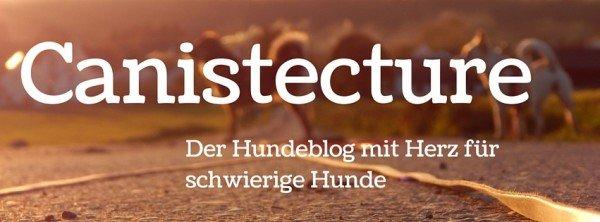 Canistecture-hundeblog-dogblog