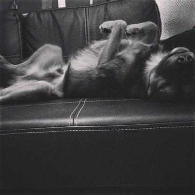 Lemmy-Sofa