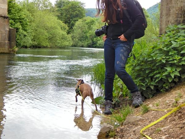Hundeblog_Canistecture_Lola_Wasser