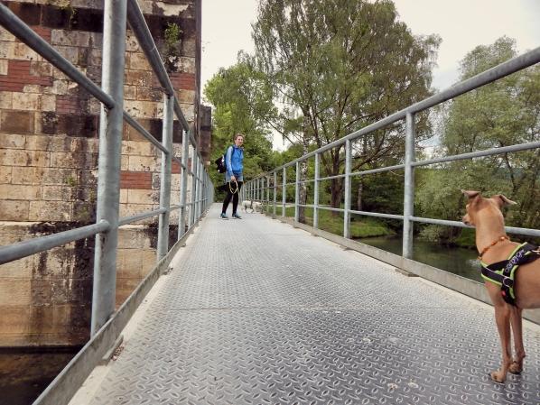 Hundeblog_Canistecture_Wanderung_Brücke
