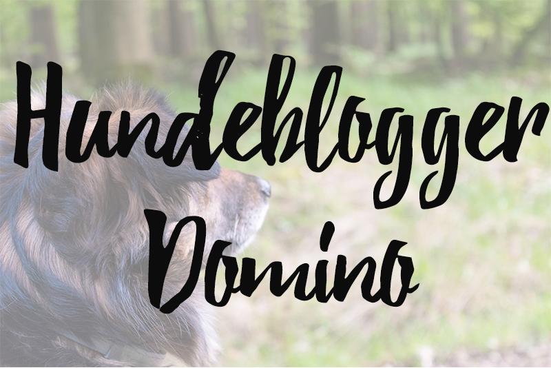 hundeblogger-domino