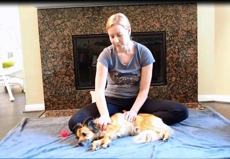 Carolin Caprano bei einer Hundemassage