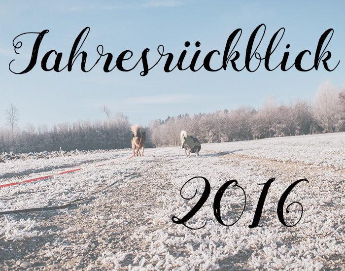 Jahresrückblick 2016 Canistecture