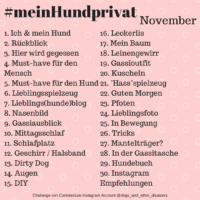 #meinHundprivat November