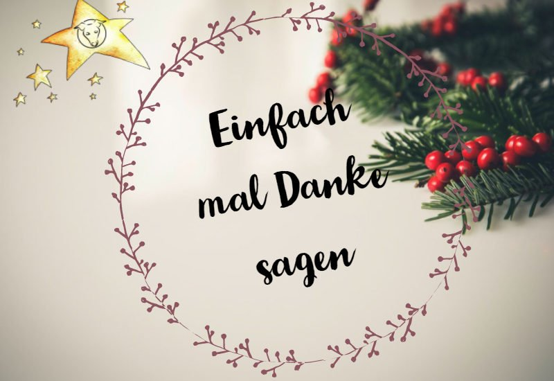 Canistecture Hundeblog miDoggy Weihnachtssterne Dog Blog 3