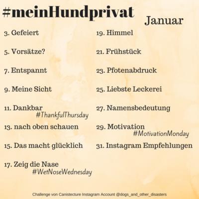 #meinHundprivat Challenge Januar 2018